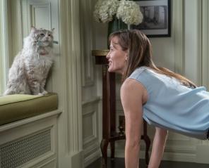 Jak zostać kotem - Wakacyjne Podróże Filmowe
